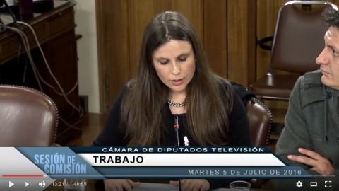 Video: Presentación de la directiva en la comisión de trabajo